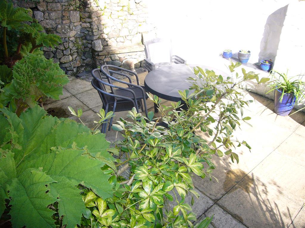 22) 10 The Warren -  Rear courtyard