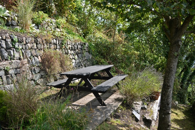Cot garden_4936