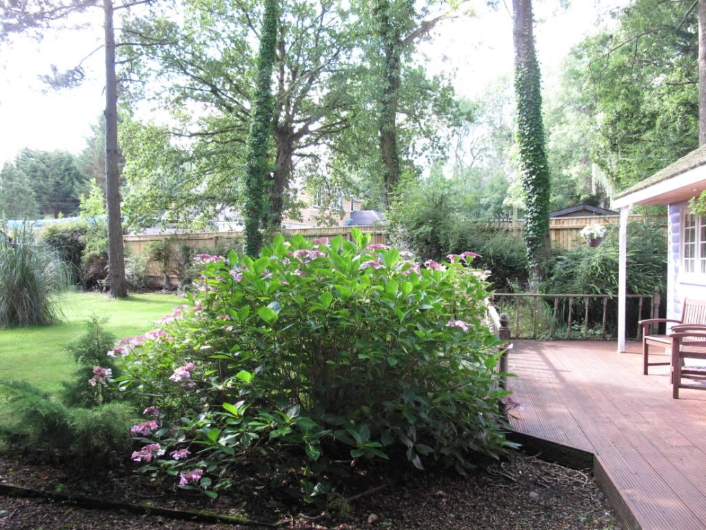 Lilac Lodge decking 2